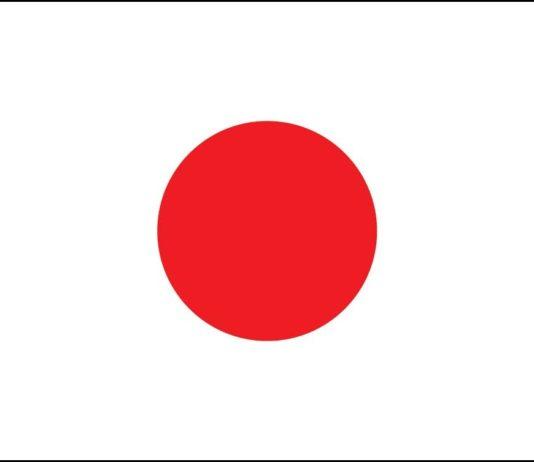 Domain Registration Lookup for Japan