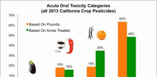 How To Stay Safe Around Pesticides