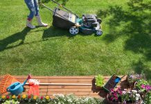Top Things to Consider When Hiring a Lawn Care Company