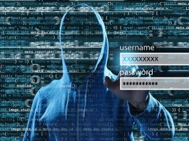 The Top 4 Reasons Why Every Company Needs a Cyber Security Strategy