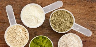 Why You Should Add Vegan Protein Powder in Your Diet