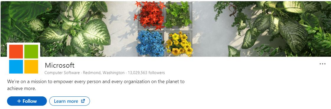 Create a Company Page on the platform