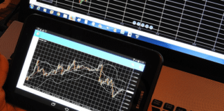 The Types of Forex Scams To Watch-Out For