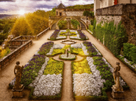 Garden Landscaping Projects